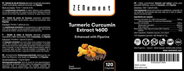 Turmeric Curcumin with Piperine - 120 Capsules